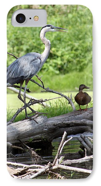 Blue Heron And Friend IPhone Case