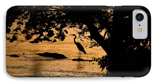 Blue Heron At Sunset IPhone Case by Andy Lawless