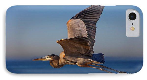 Blue Heron IPhone Case by David Millenheft