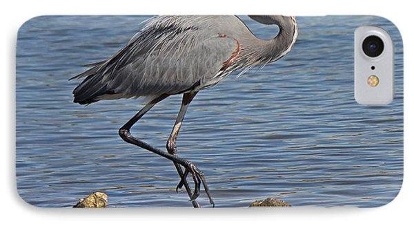 Blue Heron IPhone Case by Deborah Hughes
