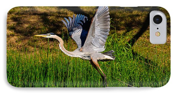 Blue Heron In Flight IPhone Case