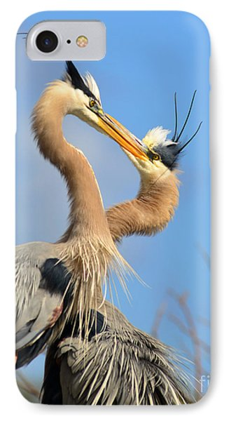Blue Heron Love IPhone Case by Jane Axman