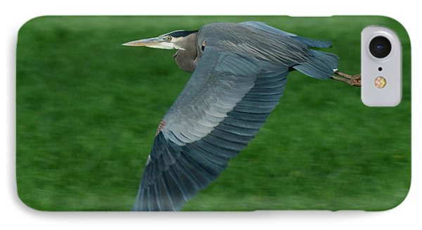 IPhone Case featuring the photograph Blue Heron by Rod Wiens