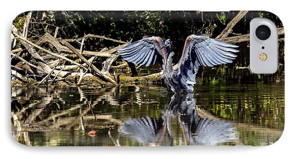 Blue Heron Stance IPhone Case by David Lester