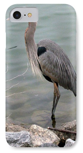 Blue Heron IPhone Case by Wendy Coulson