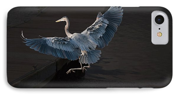 Blue Heron Wil 590 IPhone Case by G L Sarti