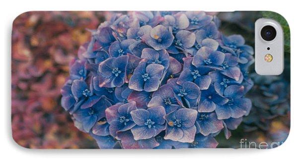 Blue Hydrangea IPhone Case by Heather Kirk