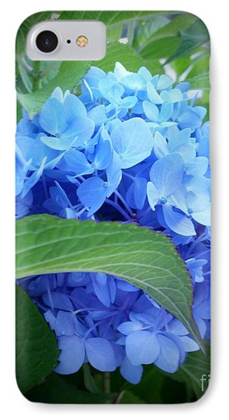 Blue Hydrangea IPhone Case by Rose Wang