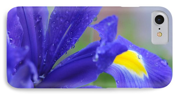 IPhone Case featuring the photograph Blue Iris by Haleh Mahbod