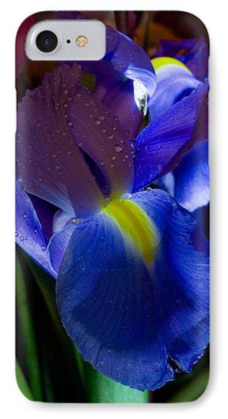 Blue Iris Phone Case by Joann Vitali