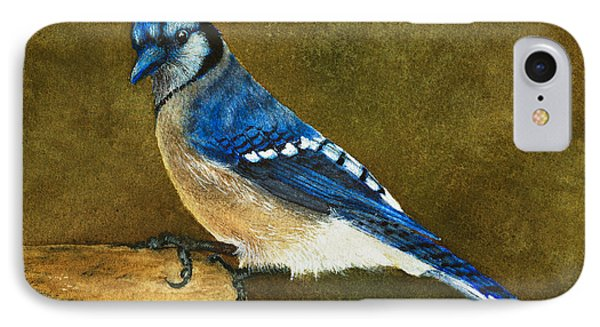 Blue Jay IPhone Case by Nan Wright