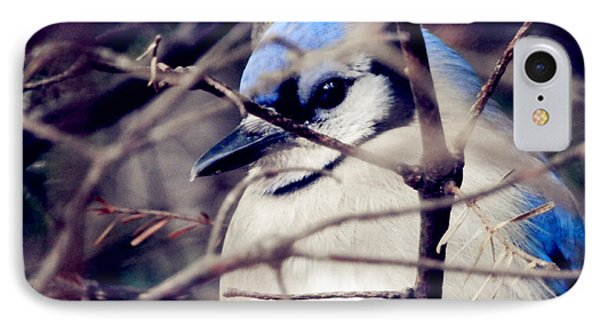 IPhone Case featuring the photograph Blue Joy by Zinvolle Art
