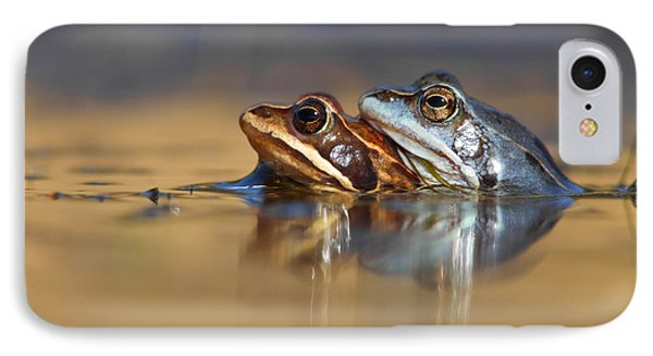 Blue Love ... Mating Moor Frogs  IPhone Case by Roeselien Raimond