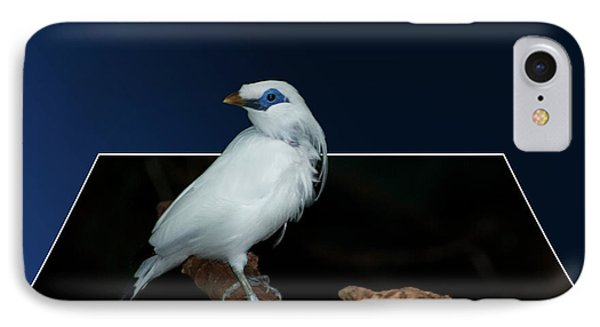 Blue Mask Bandit Bird Phone Case by Thomas Woolworth