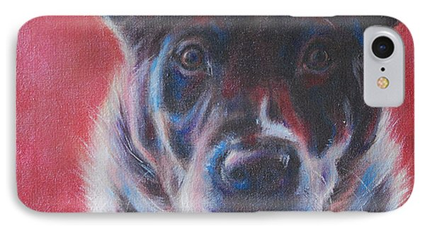 Blue Merle On Red Phone Case by Kimberly Santini