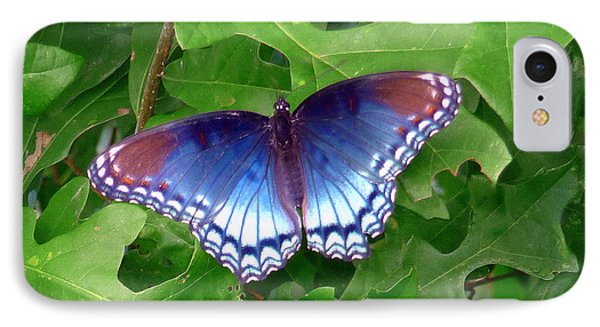 IPhone Case featuring the photograph Red Spotted Purple Butterfly by Jim Whalen