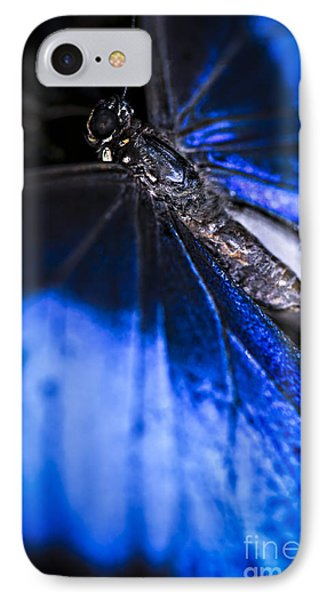 Blue Morpho Butterfly With Open Wings IPhone Case