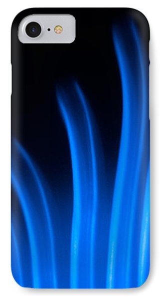 Blue Palm IPhone Case by Darryl Dalton