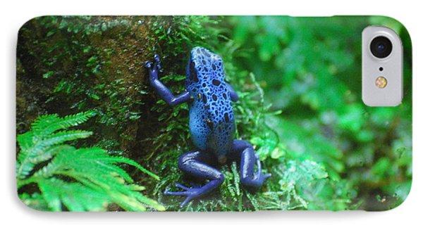 Blue Poison Dart Frog IPhone Case by DejaVu Designs