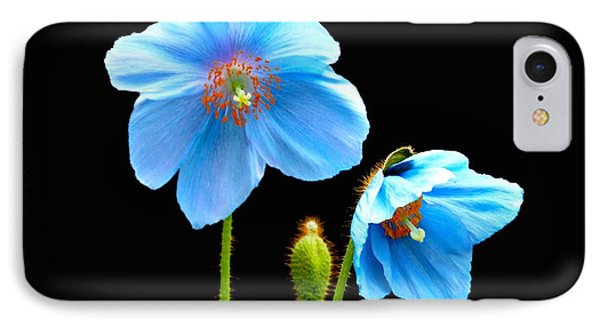 Blue Poppy Flowers # 4 IPhone Case