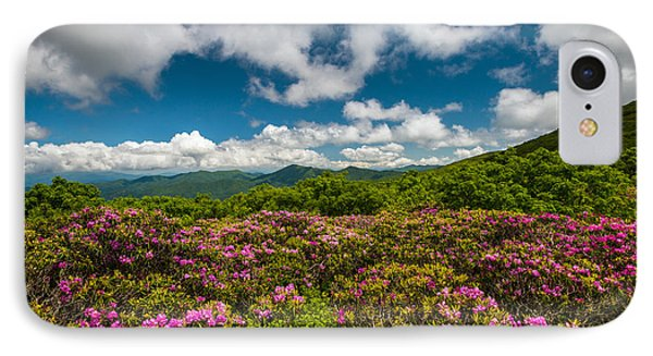 Blue Ridge Parkway Spring Flowers - Spring In The Mountains IPhone Case by Dave Allen