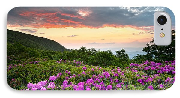 Blue Ridge Parkway Sunset - Craggy Gardens Rhododendron Bloom Phone Case by Dave Allen