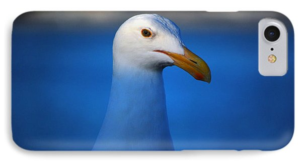 Blue Seagull Phone Case by Debra Thompson