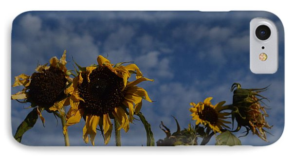 IPhone Case featuring the photograph Blue Sky Buddies by Brian Boyle