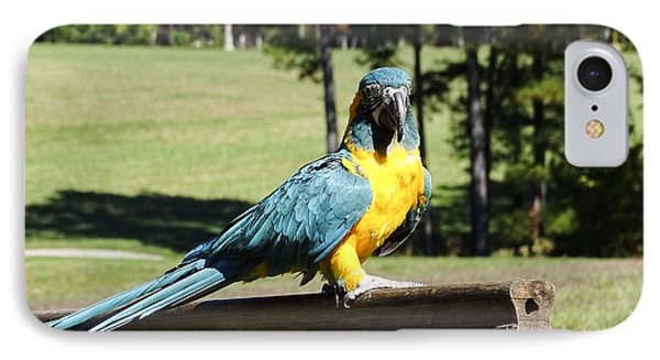 IPhone Case featuring the photograph Blue Throat Macaw by Melissa Messick