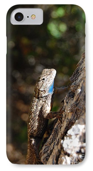 IPhone Case featuring the photograph Blue Throated Lizard 4 by Debra Thompson