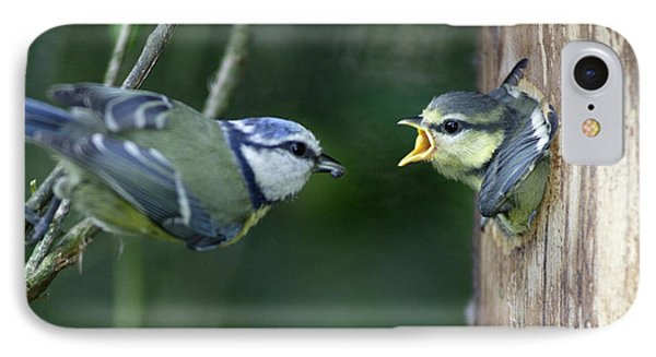 Blue Tit And Chick IPhone Case by Duncan Usher