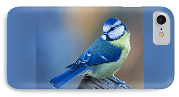 Blue Tit Looking Behind Phone Case by Torbjorn Swenelius