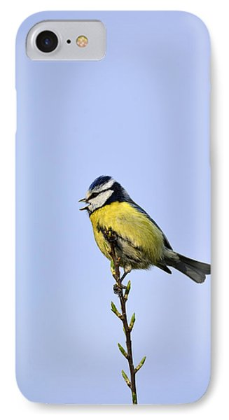 Blue Tit Sitting Pretty  IPhone Case by Tommytechno Sweden