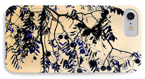 Blue Walnuts Phone Case by Tina M Wenger