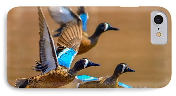 IPhone Case featuring the photograph Blue-winged Teals by Brian Stevens
