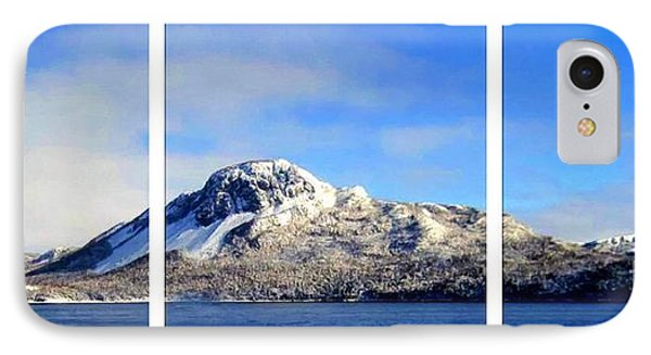 Blue Winter Triptych Phone Case by Barbara Griffin