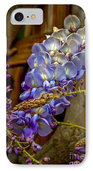 Blue Wisteria IPhone Case by Sabine Edrissi