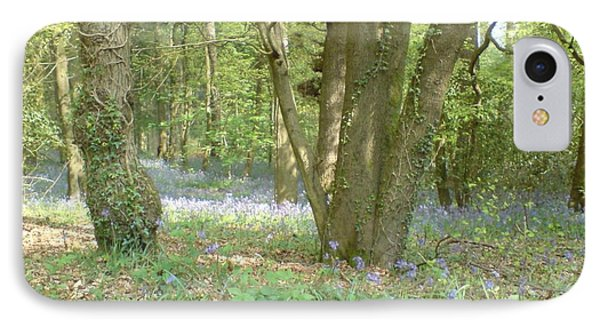 Bluebell Wood IPhone Case by John Williams