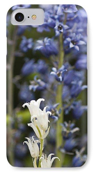 Bluebells 1 Phone Case by Steve Purnell