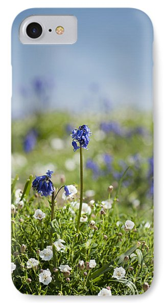 Bluebells In Sea Campion Phone Case by Anne Gilbert