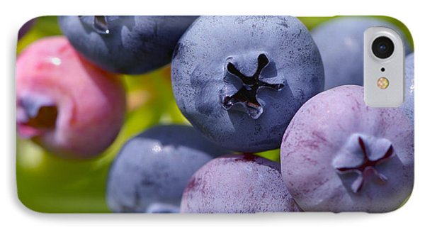 Blueberries IPhone Case by Sharon Talson