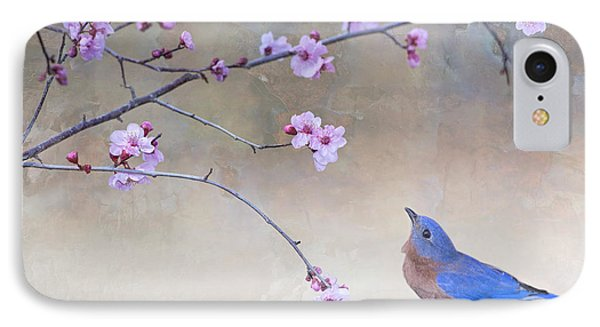 Bluebird And Plum Blossoms IPhone Case