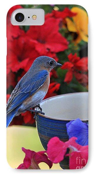 Bluebird Breakfast IPhone Case by Luana K Perez