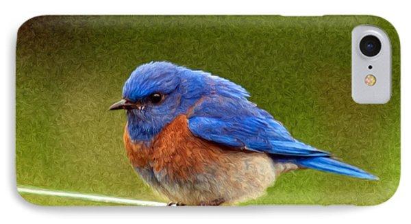 Bluebird  Painting Phone Case by Jean Noren