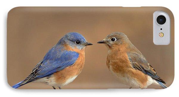 Bluebird Pair IPhone Case