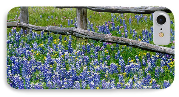 Bluebonnet Flowers Blooming IPhone Case by Panoramic Images