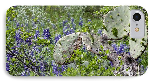 Bluebonnets And Cactus IPhone Case by Ron Grafe