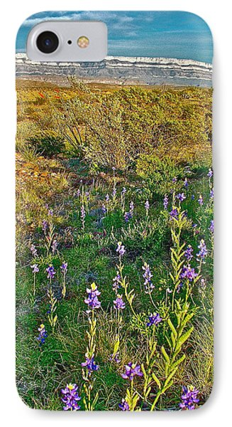 Bluebonnets And Creosote Bushes In Big Bend National Park-texas IPhone Case
