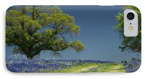 Bluebonnets Road Trees IPhone Case by Richard Mason