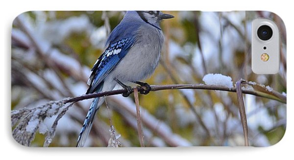 Bluejay Grass IPhone Case
